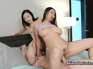 Chubby weasel words triptych with horny Asian hotties
