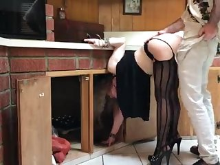 COUGAR catch- in dramatize expunge kitchen drilled by neighbor (pin)